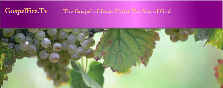 GospelFire.Tv     The Gospel of Jesus Christ The Son of God